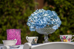 Garden Party Ideas - Blue Hydrangea Blooms in antique candy bowl